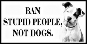 ban stupid people copy