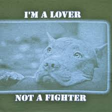 lover not a fighter copy