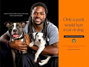 torrey smith - lifewithdogs